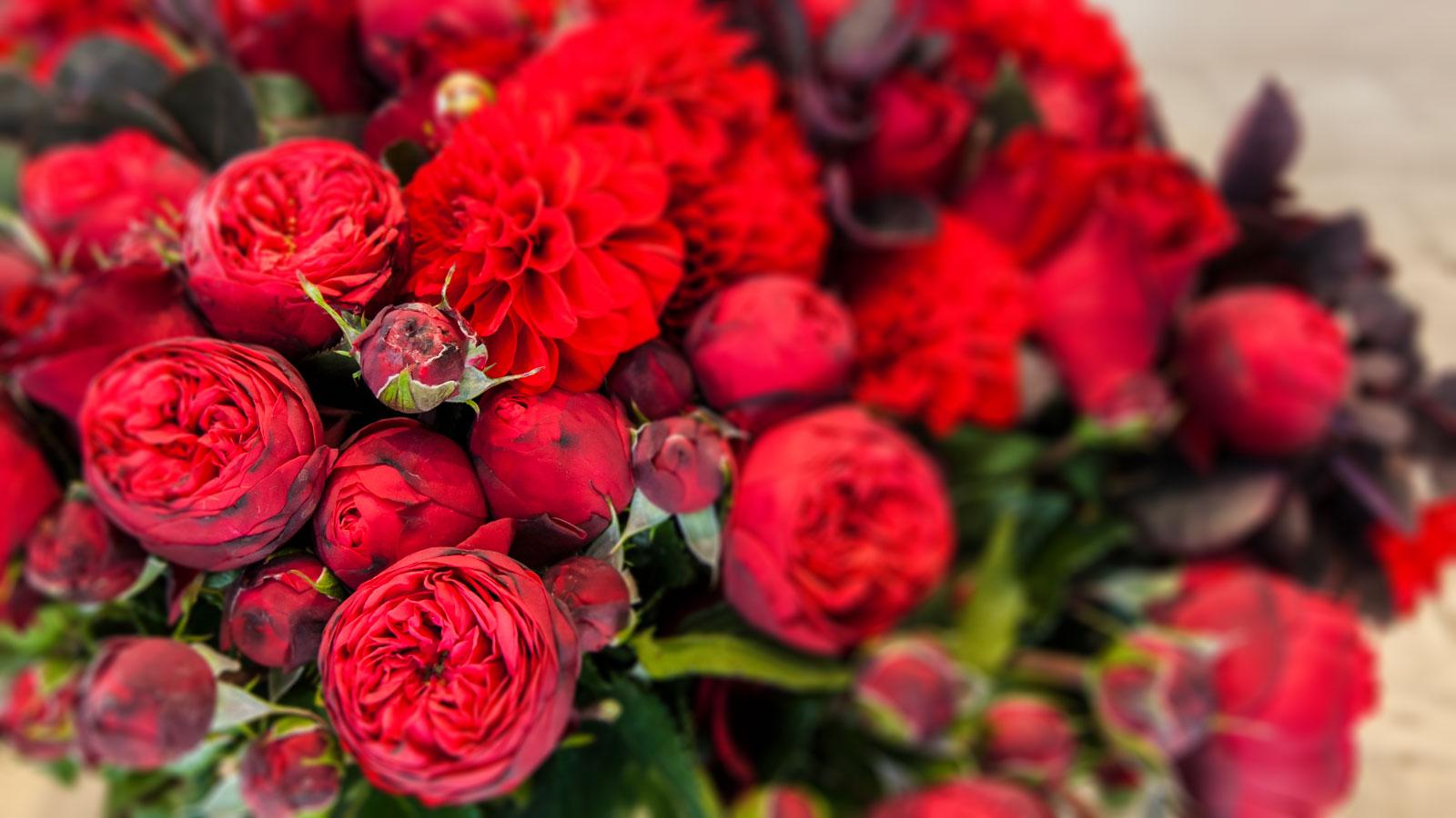 Ihr Floristikfachbetrieb in Refrath – Der Blumenladen Inh